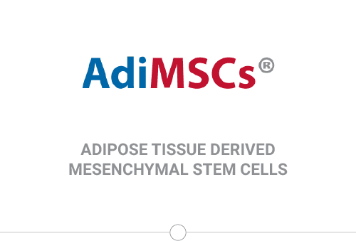 Fat Tissue Derived Stem Cells
